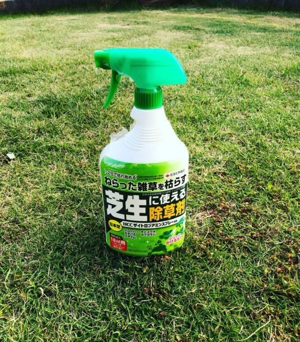芝生の除草剤